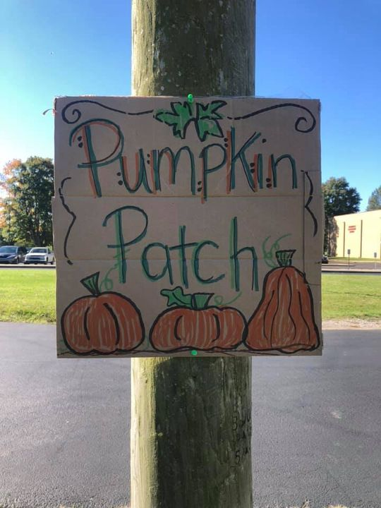 We can't take field trips to the pumpkin patch right now but I can…