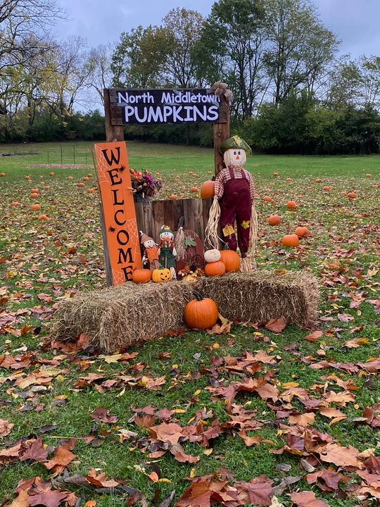 Someone in this group shared that they hosted a pumpkin patch at school &…